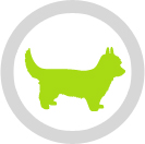 Little Dogs Logo