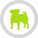 Medium Dogs Logo